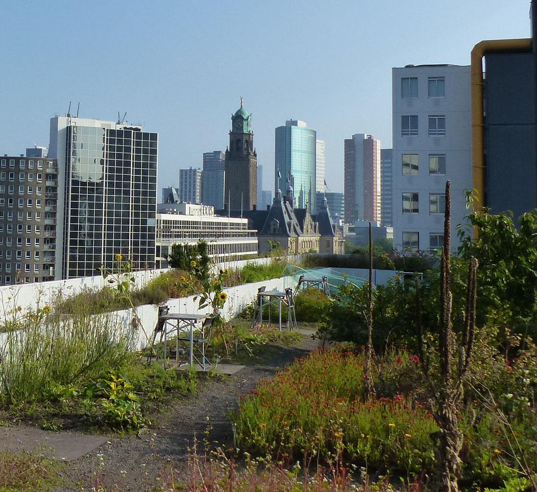 Visite professionnelle à Rotterdam du 26 au 28 septembre