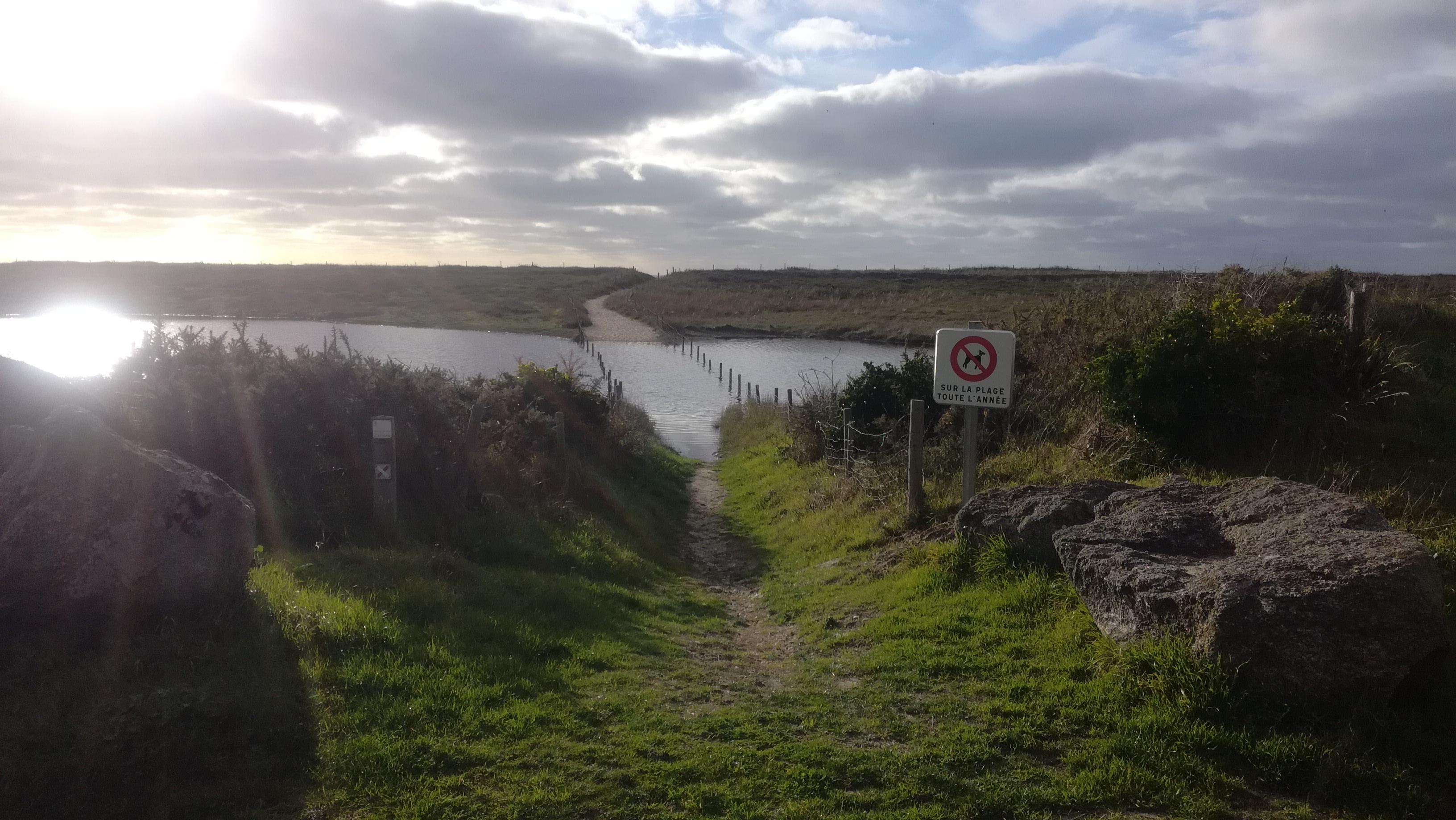 MAI 2021: AGAP retenue pour l'aménagement des étangs et dunes de Kerouiny à Trégunc (29)